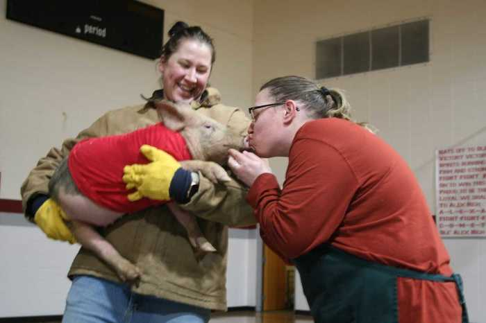 FFA Week- Kiss the Pig, Ms. Becky