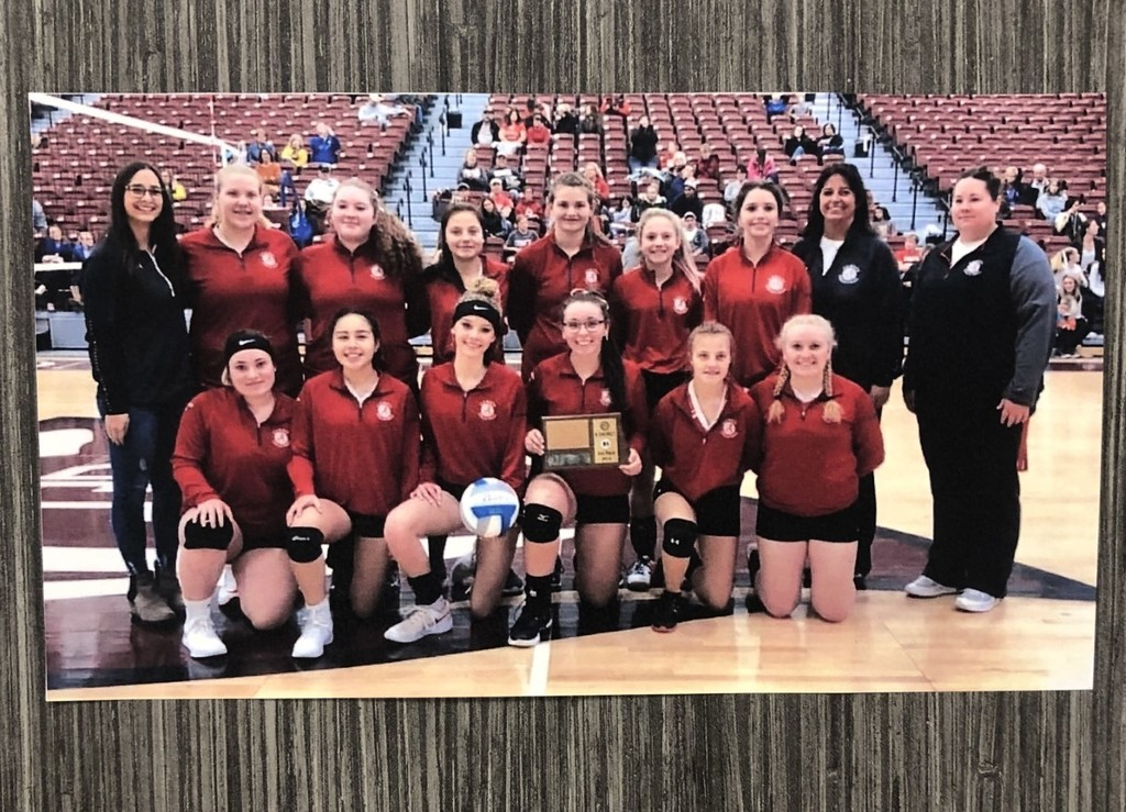 2019 District Volleyball
